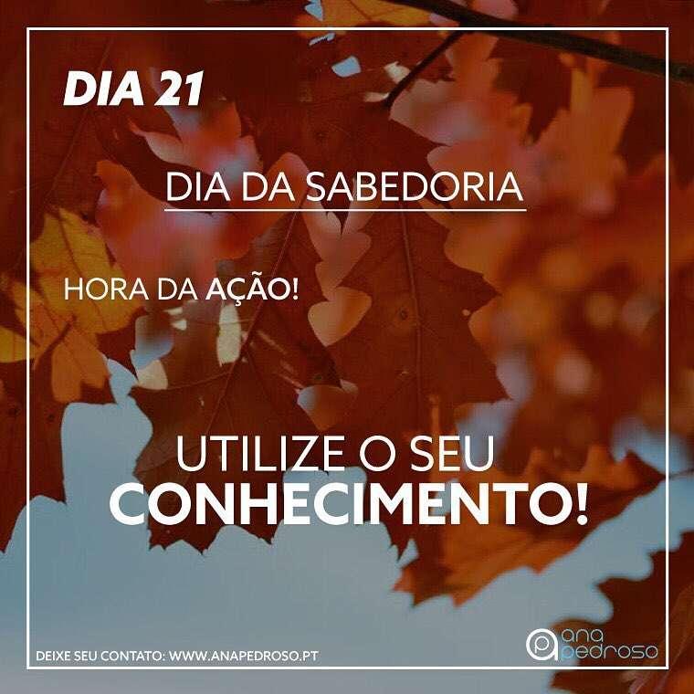 DIA 21_ DIA_DA_SABEDORIA_3