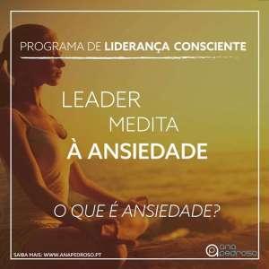 Leader Medita - Curso Ana Pedroso dia 2 -1