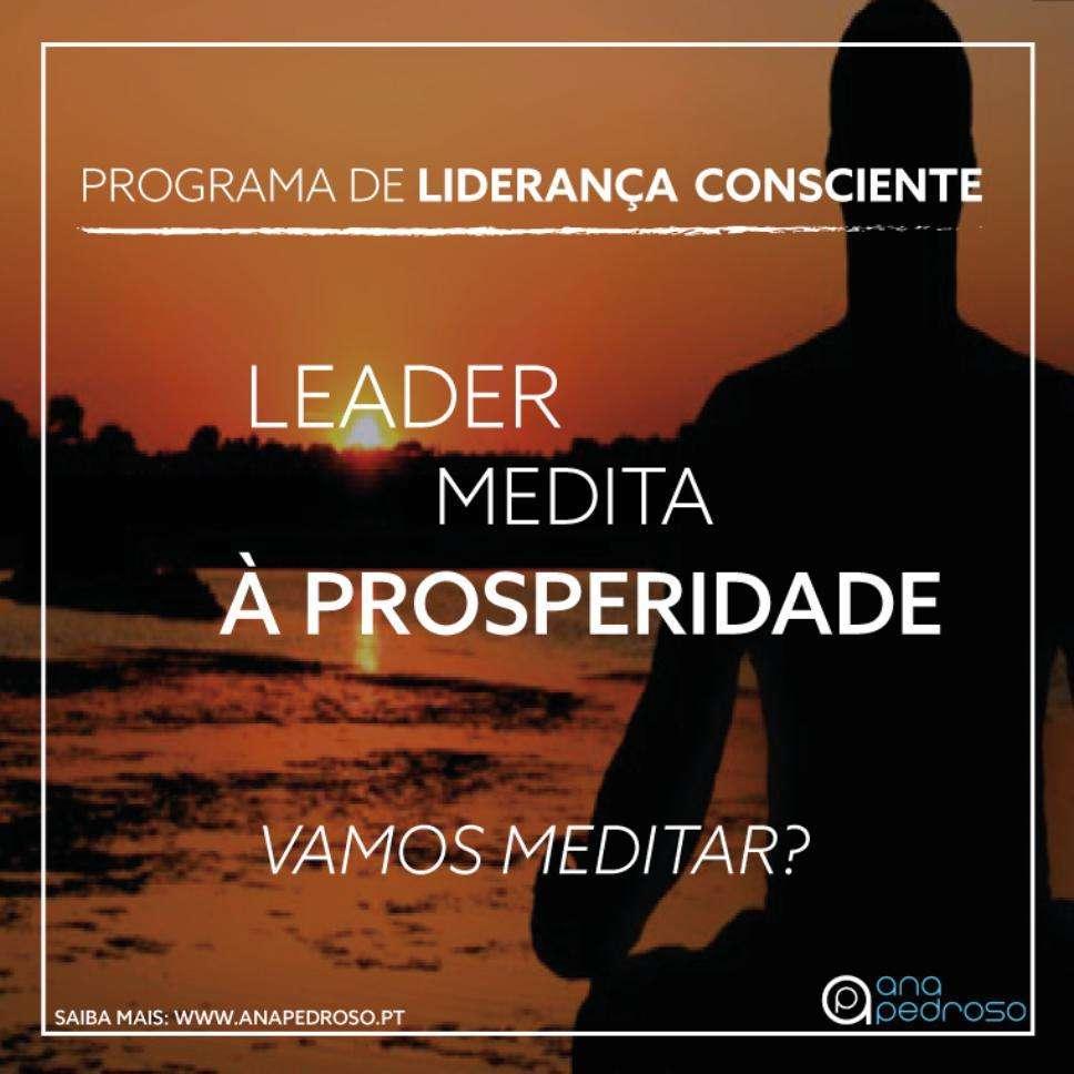 Leader Medita - Curso Ana Pedroso dia 6 -3
