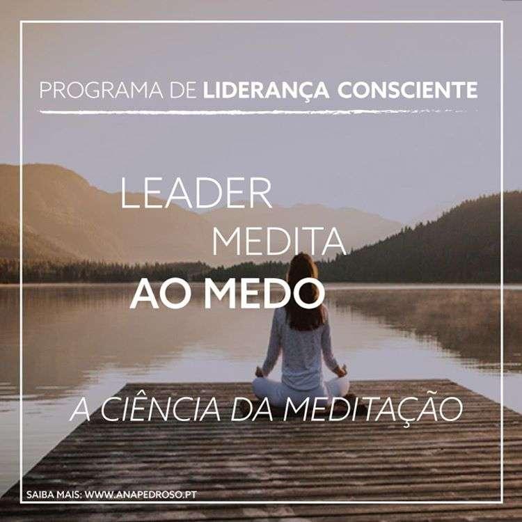 Leader Medita - Curso Ana Pedroso dia 4 -2
