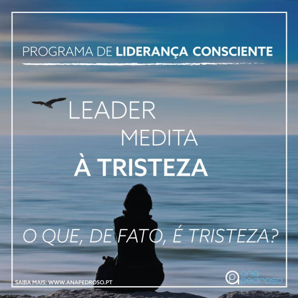 """LEADER MEDITA 1.0"" | #5 Programa de 12 Dias"