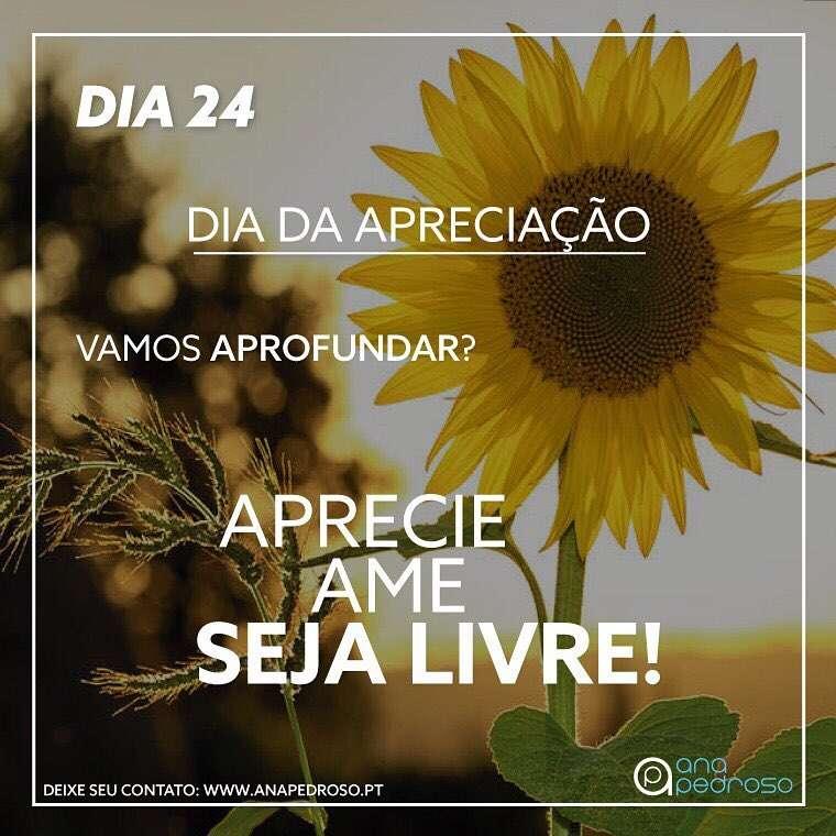 Ana Pedroso-Programa 27 dias #24 | 4