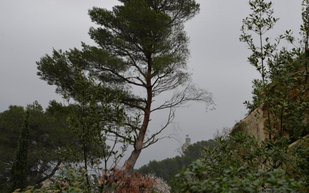 la tour de Barbentane