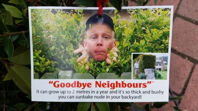 """Goodbye Neighbors"" - A shrubbery that lets you sunbake nude!"