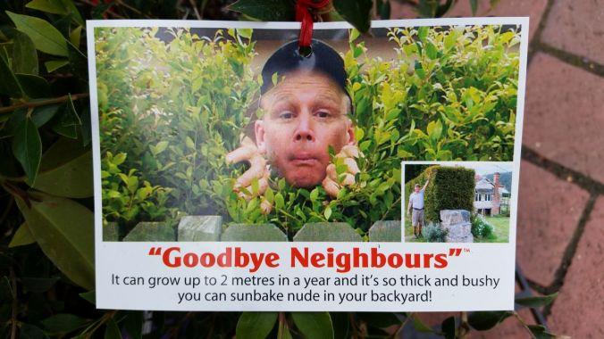 """Goodbye Neighbors"" - A shrubbery so thick and bushy you sunbake nude!"