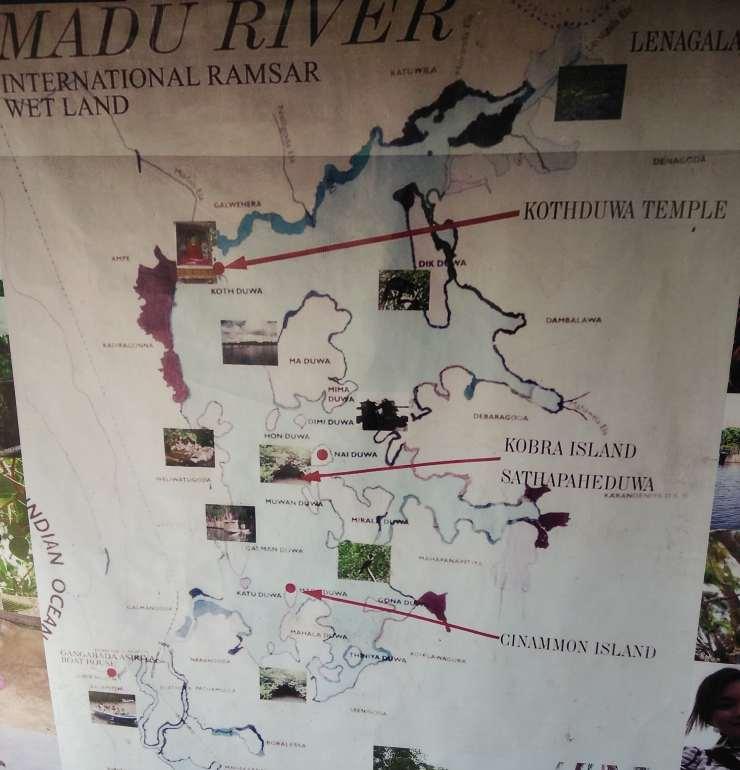 Madu River boat trip srilanka
