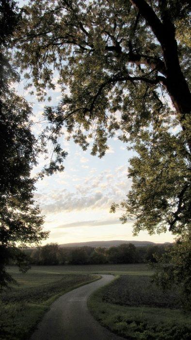 Pastorale Abendlandschaft - sieht sogar ein bisschen nach Lorrain aus... (Foto: Martin Dühning)