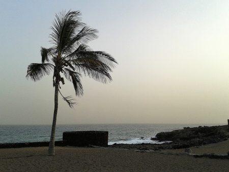 An manchen Tagen weht auf Lanzarote ein heftiger, fast stürmischer Passatwind über die Insel.
