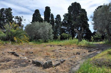 Reste eines antik-griechischen Wohnhauses, umgeben von Olivenbäumen und Palmen (Foto: Martin Dühning)