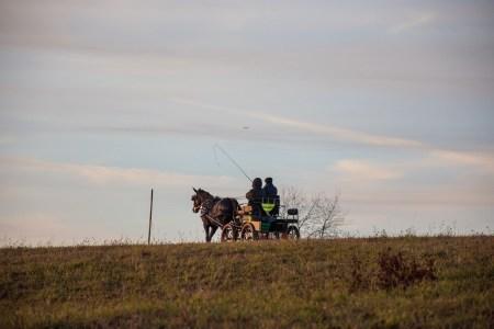 Eine gemütliche Kutsche rollt dem Abendrot entgegen (Foto: Martin Dühning).