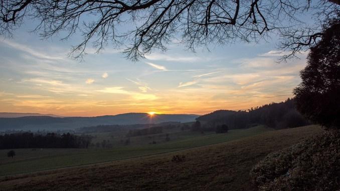 Unter den Zweigen der Baltersweiler Kapellenlinde breitet sich eine noch unbenebelte Vorwinterlandschaft aus (Foto: Martin Dühning).
