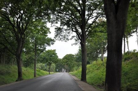 Landstraße in der Kaschubei nahe Oliva (Foto: Martin Dühning)