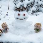 Ziemlich kleine Winterfreuden