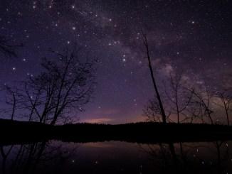 Starlight Sky (Foto: James Wheeler via Pexels)