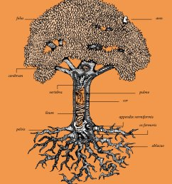 graphic tree diagram [ 900 x 1277 Pixel ]