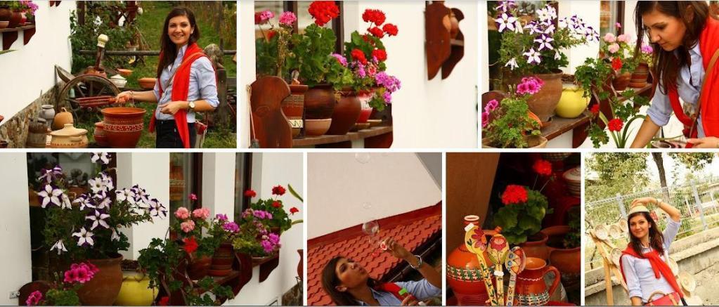 Horezu – ceramica si traditie