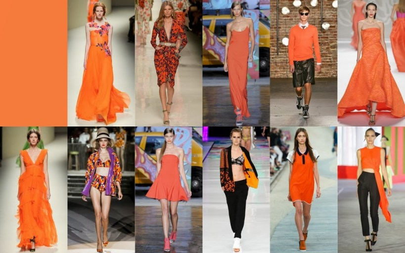 Celosia Orange FCR Spring 2014 Pantone Collections