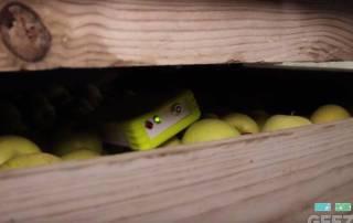 Geezar, empresa de CEEIARAGON, se alía para incrementar el uso de tecnologías en la postcosecha y distribución de fruta