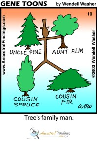 Tree's Family Man (Genetoons Cartoon #10)
