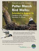 2016-potter-marsh-bird-walks-extended