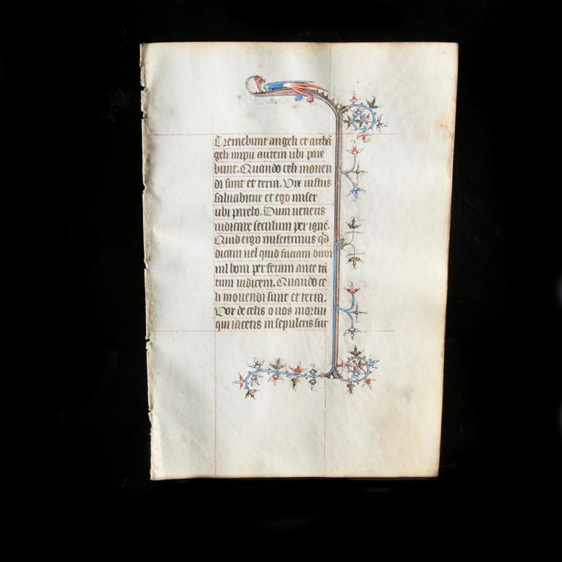 Medieval Manuscript Leaf with Dragon