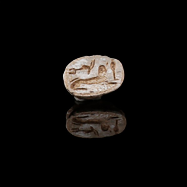 Small Steatite Scarab