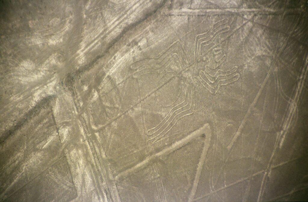 Nazca-lineas-arana-c01