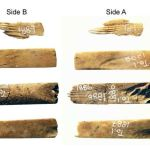 'World's Oldest' Tattooing Kit Dating Back 2,700 Years Contains Tools Made From Human Bones