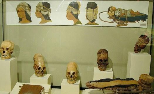 Vitrina con cráneos deformados en el Museo Regional de Ica, Perú. (Namiac/CC BY-SA 3.0)