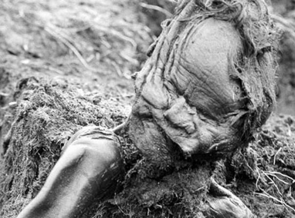 El cuerpo del Hombre de Grauballe tal y como fue descubierto. (Public Domain)
