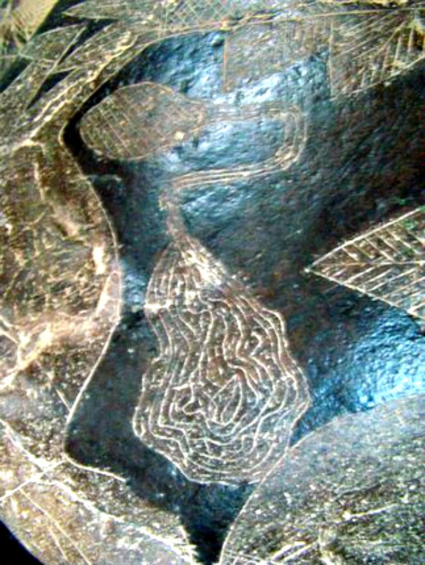 Detalle de una de las piedras de Ica en la que, supuestamente, se observa un cerebro conectado a algún tipo de aparato. (Fotografía:La Gran Época/Nancy Sathre-Vogel)