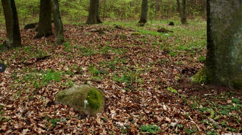 Ruinas de una de las tumbas descubiertas cerca de Dolice – estado actual. Fotografía: M. Schiller