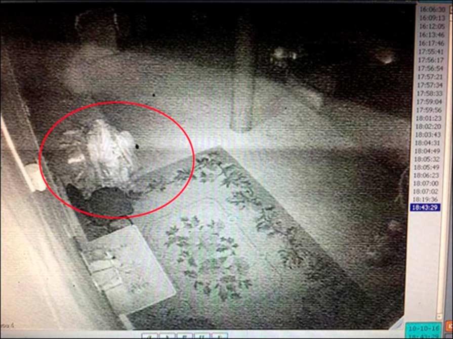 En la segunda imagen, captada al día siguiente, se observa una figura similar cercana al sofá, o quizás sobre él. Fotografía: Damba Ayusheev