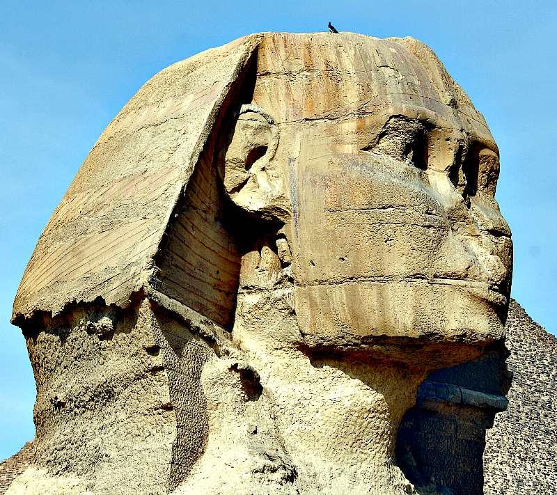 Detalle de la cabeza y el tocado de la esfinge, donde pueden observarse los daños provocados por la erosión. (Wikimedia Commons)