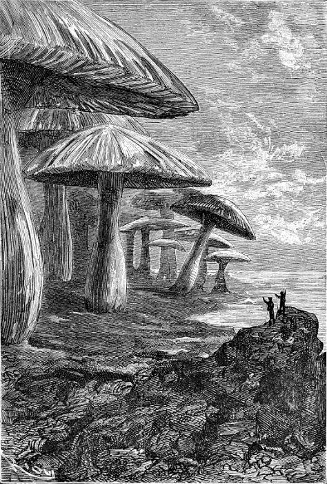 """Ilustración dibujada por Édouard Riou en 1864, de la edición original de """"Viaje al centro de La Tierra"""", obra del célebre Julio Verne. (Wikimedia Commons)"""