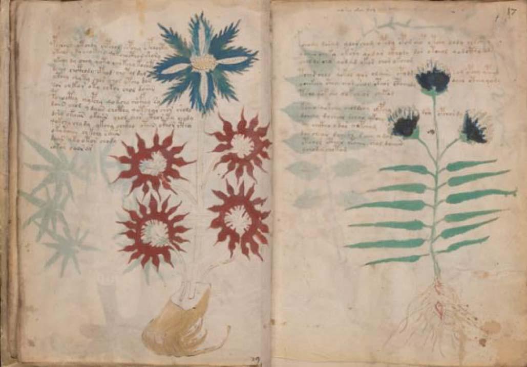 Digital Images Voynich Manuscript Digital Imaging
