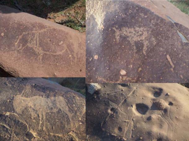 Sculture di ippopotami, cavalli e antilopi nel cratere da impatto Vredefort. (Dr. Matthew Huber / Università dello Stato libero)