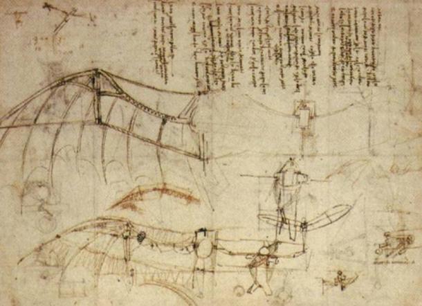Uno dei disegni di Leonardo da Vinci di una macchina volante mostra stretta somiglianza con le ali di un pipistrello