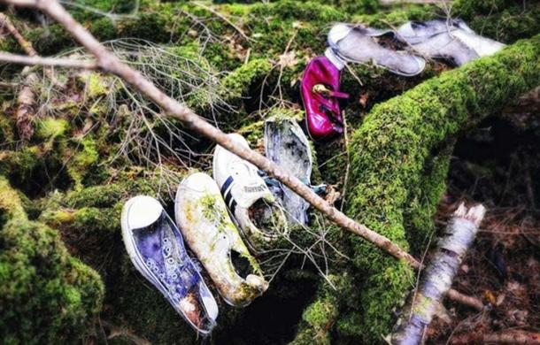 A collection of shoes, presumably from those who have taken their lives, inside Aokigahara forest.