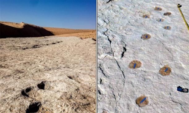 Human and animal footprints found in Tabuk, northern Saudi Arabia. Source: Heritage Commission Press Release