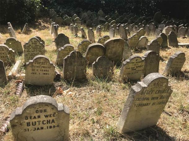 Pierres tombales survivantes du cimetière d'animaux de Hyde Park.  (photographie de E. Tourigny, prise avec l'autorisation de The Royal Parks / Antiquity)
