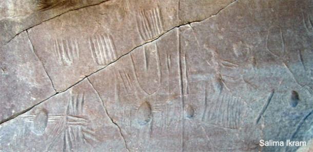 Arte rupestre pre-dinástica inusual descubierto en Egipto