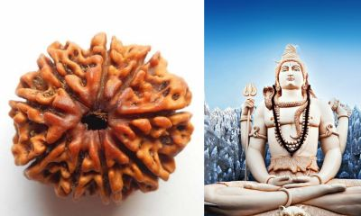 Benefits of 9 Mukhi RUDRAKSHA