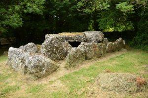 Wedge Tomb on recent tour of Ireland