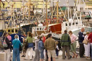 Westport Harbor Ireland
