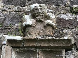 Pics from Ireland tours Sheela na gig near Mullingar