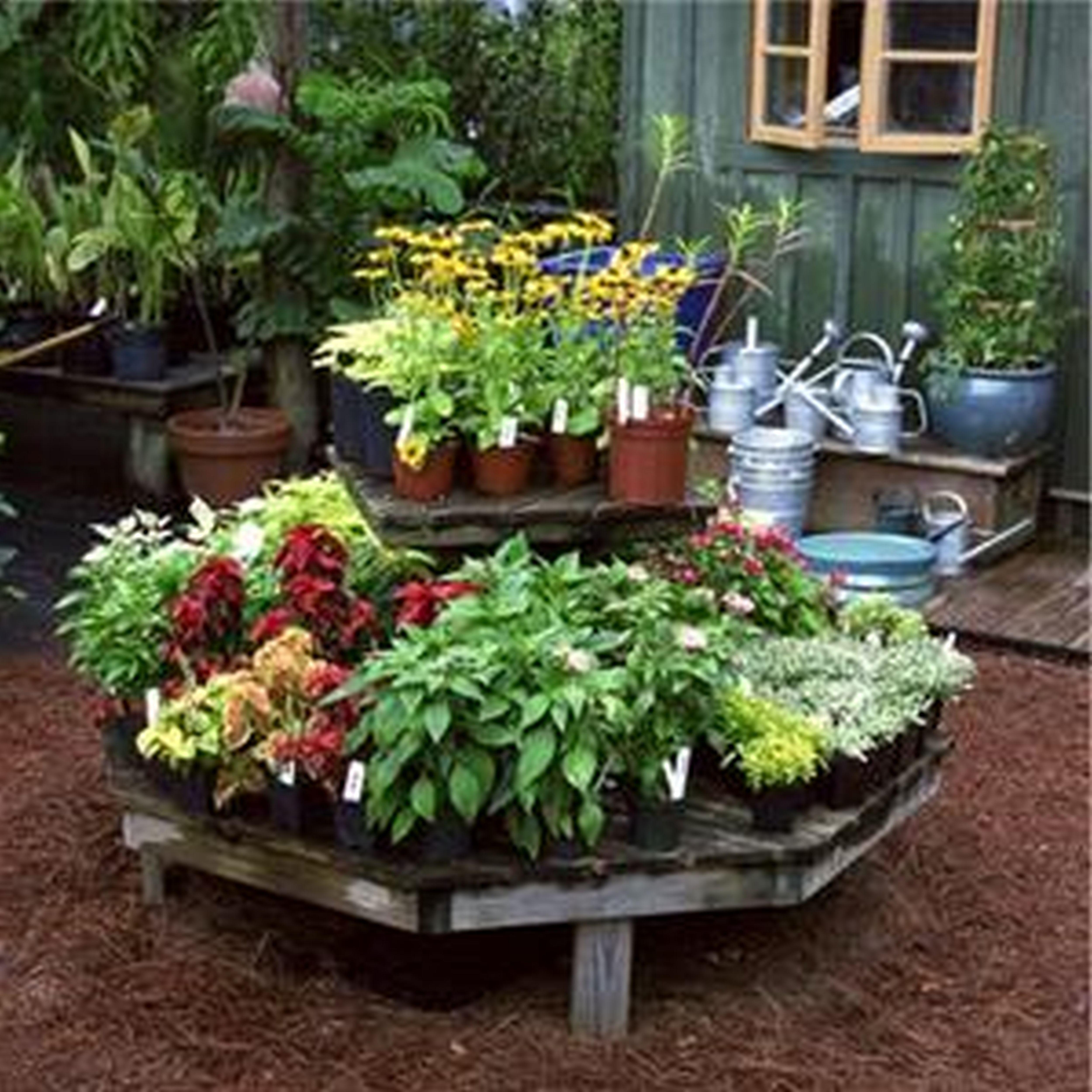 Planning A Flower Garden For Beginners Flowers Ideas