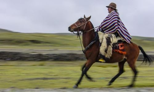 tradition horse riding ecuador
