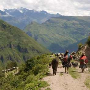 Image result for TRANSFER TO THE SACRED VALLEY