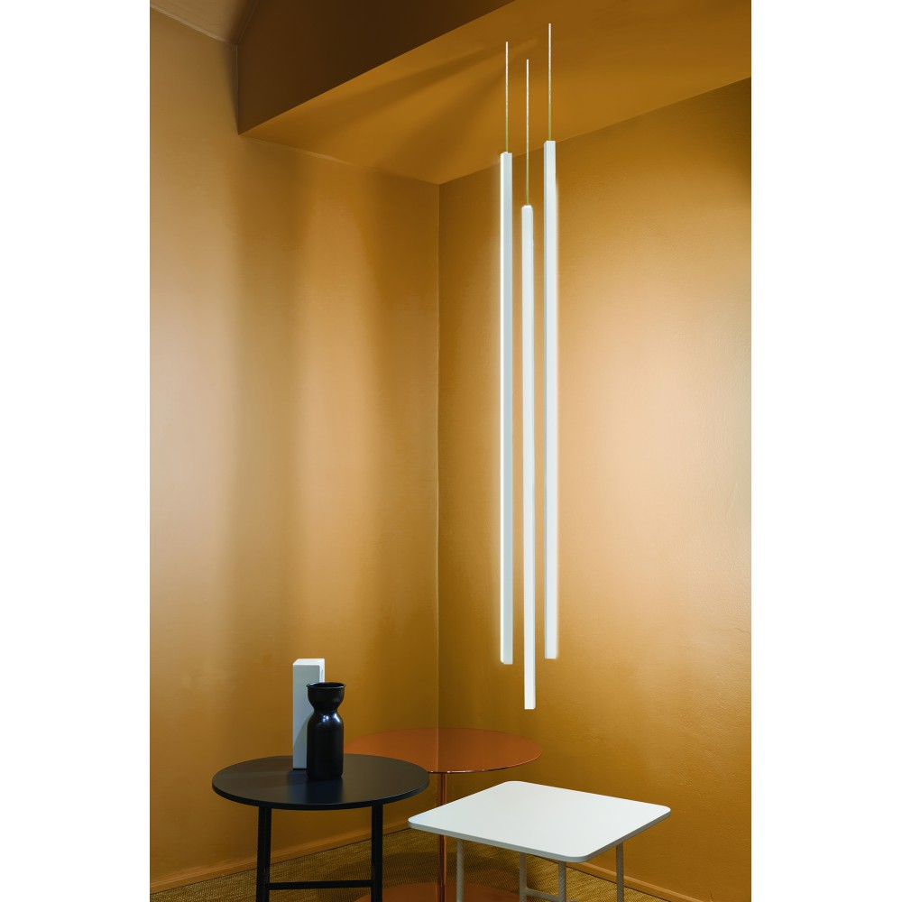 Nemo Linescapes Pendant Vertical and Recessed Suspension